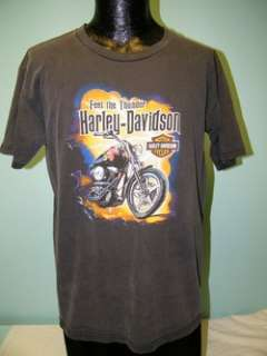 Mens HARLEY DAVIDSON Motorcycles Cotton BUMPUS WORN BIKER T Shirt L Lg