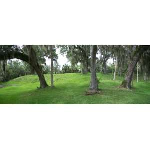 Arch Park Panorama 02 United States (4 foot wide Removable Graphic