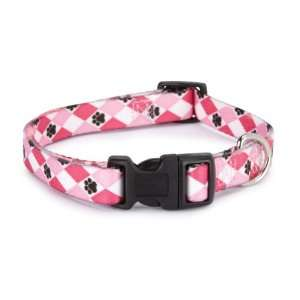 Casual Canine Nylon Pooch Pattern Dog Collar, 14 to 20