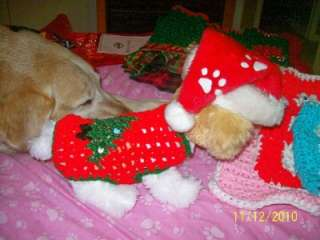 Dog Apparel Decorated CHRISTMAS TREE Sweater