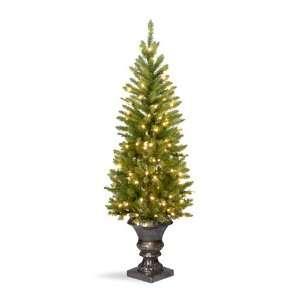 Fir Entrance Christmas Tree; 100 Clear Lights UL