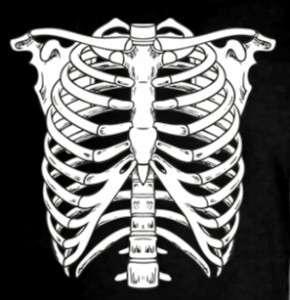 Skeleton Bones Skull Scary Chest Body Cool Tee T Shirt