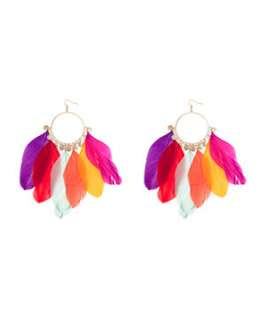 null (Multi Col) Feather Ring Earrings  241198799  New Look
