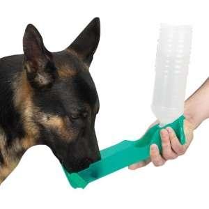 Guardian Gear 25 Ounce Jumbo Pet Handi Drink, Green