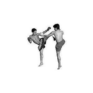 Muay Thai Kickboxing 2 DVD Set by Pud Pad Noy Worawoot