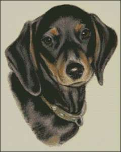Dachshund Dog Cross Stitch Pattern